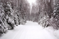 winter3a